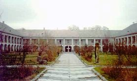 Muzeul Judetean